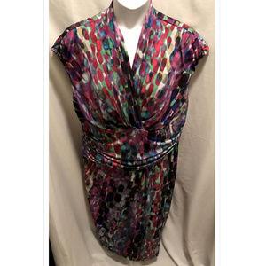 Size 18W Ivy & Blu Maggy Boutique Dress